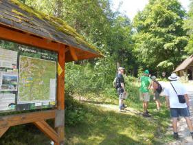 Wandelvakantie Zwarte Woud : Juli 2017