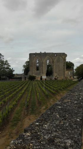 Riviercruise Dordogne en Garonne : april 2017